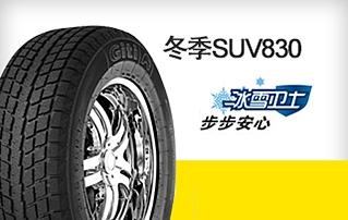 石家庄佳通轮胎GitiWinter SUV830