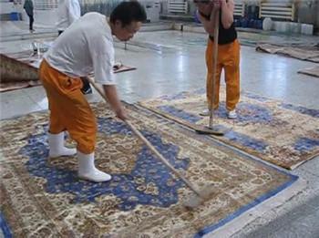 家庭地毯清洗清洁