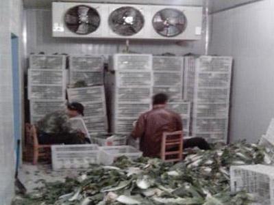贵阳蔬菜冷库安装
