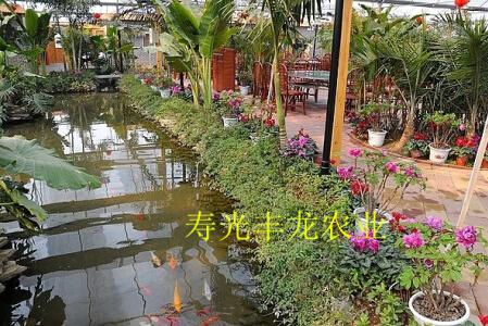 园林生态餐厅