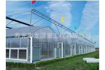 薄膜连栋温室造价