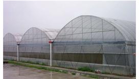 无立柱温室大棚