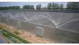 塑料薄膜温室建设