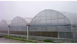 薄膜温室工程建设
