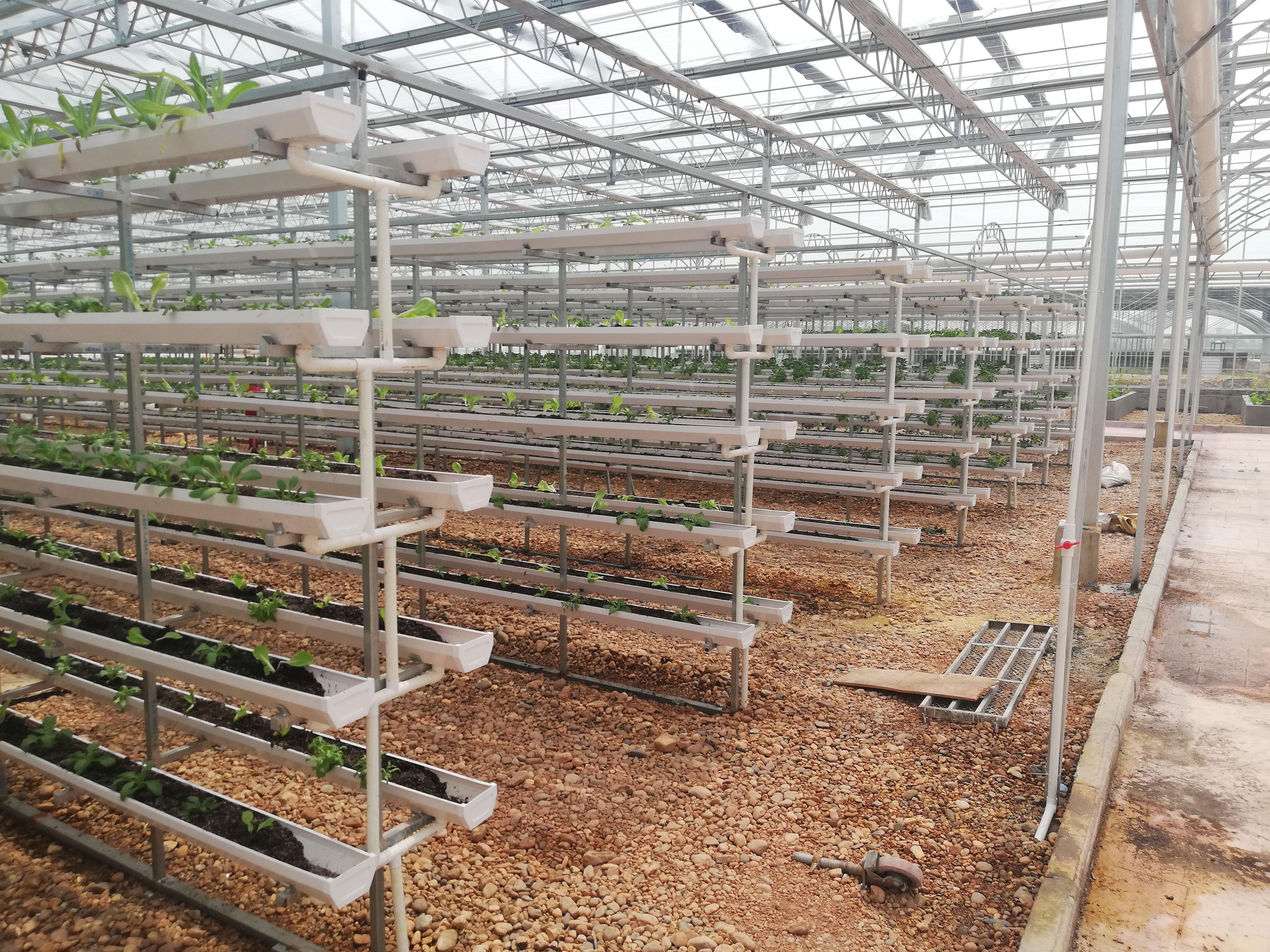 无土栽培,水肥一体化