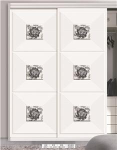 板式衣柜移门:ES-6082