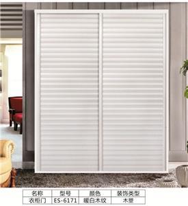 板式衣柜移门:ES-6171