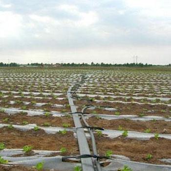 云南灌溉工程