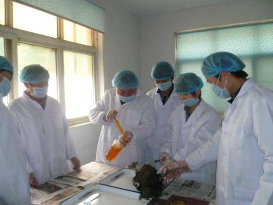 鸡病防治专业实践