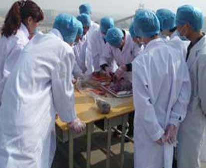 猪病防治专业培训