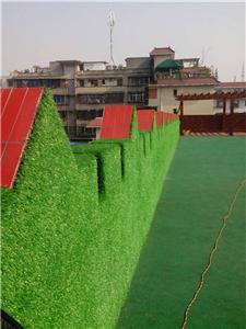 四川人造草坪