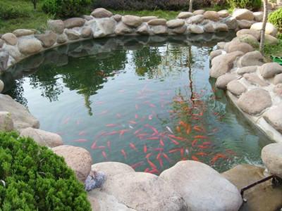 武汉景观水处理设备
