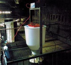 仔猪液体饲喂器