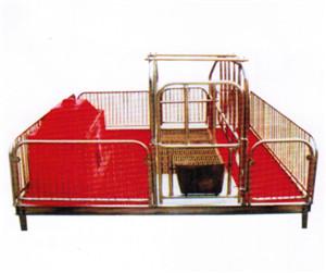 單體母豬產床