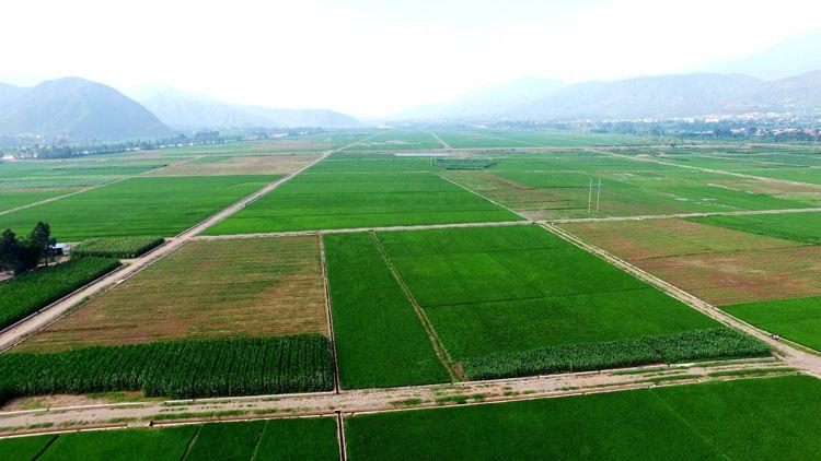 农田水利工程