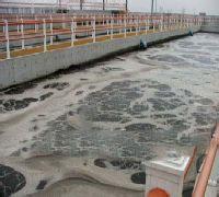 水池防水补漏公司哪里有