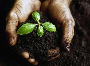 土壤修复 土壤修复公司 土壤修复物美价廉