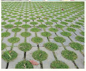 贵阳草坪砖