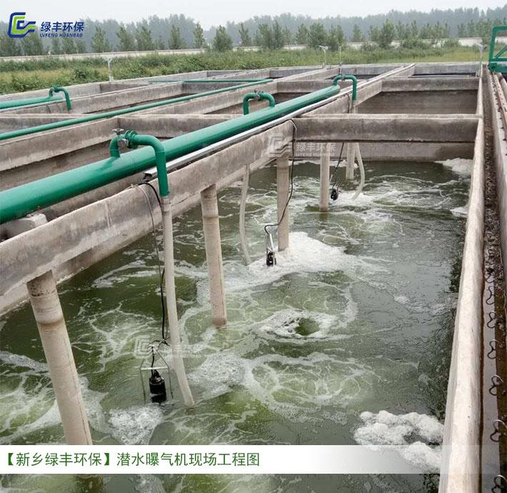 畜牧养殖废水处理工程