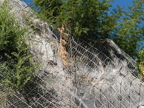 山体滑坡防护网批发