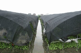 贵州遮阳网
