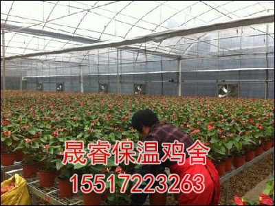 花卉温室大棚建造