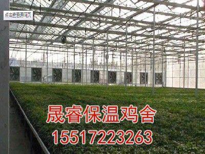 立体大棚种植技术