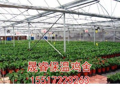 温室花卉大棚