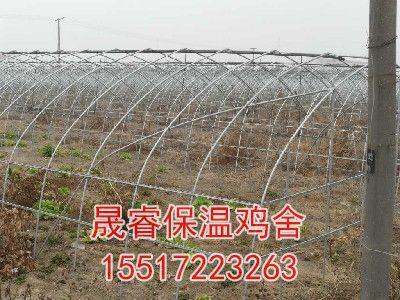 日光温室大棚种植