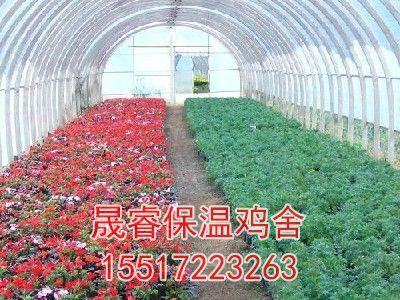 建花卉大棚