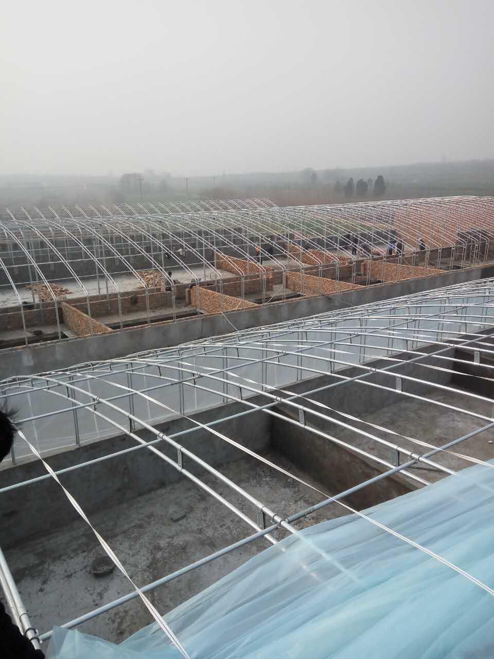 生态园温室大棚