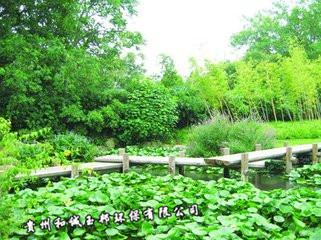 贵阳人工湿地水处理