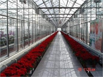 玻璃连栋ca88亚洲城备用网
