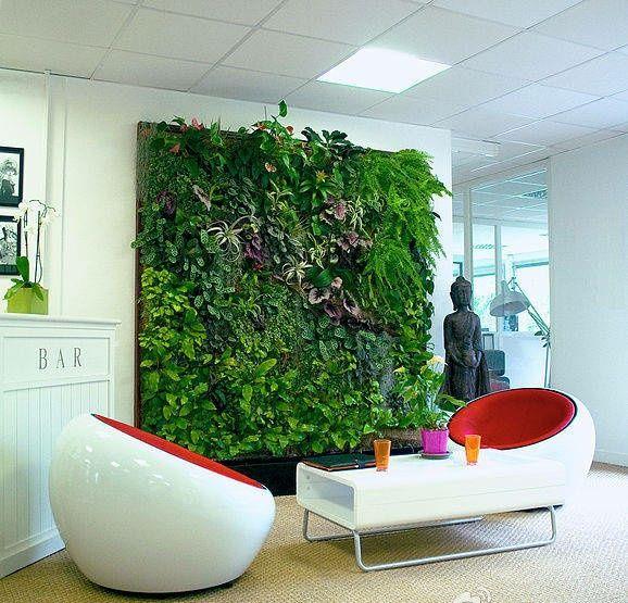 室内植物建筑