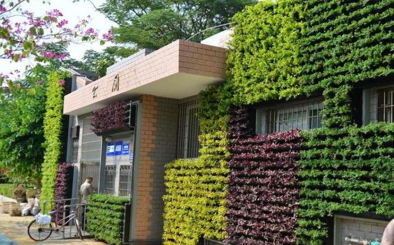 外墙植物建筑