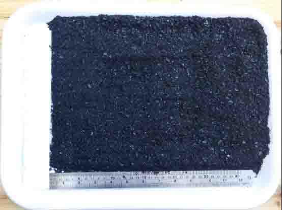 大安煤矿粉煤