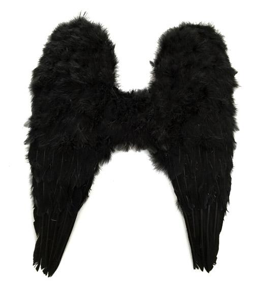 天使羽毛翅膀
