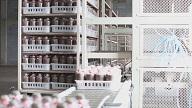 设计食用菌工厂