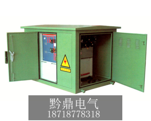 环网分支箱DFW-12(两进四出)