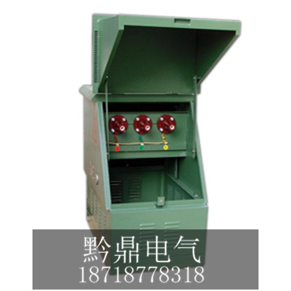 环网分支箱DFW-12(不带开关型)