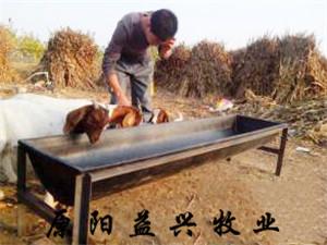 浙江羊槽厂家