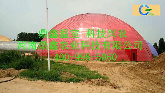 河南生态酒店温室
