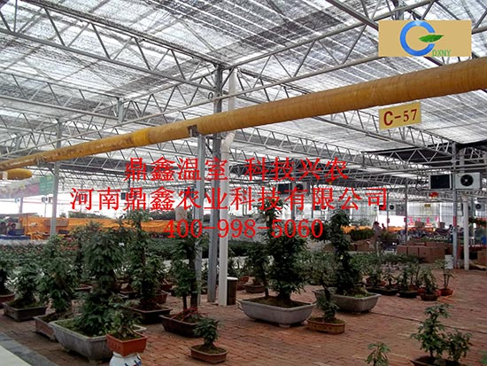 花卉市场专用温室大棚