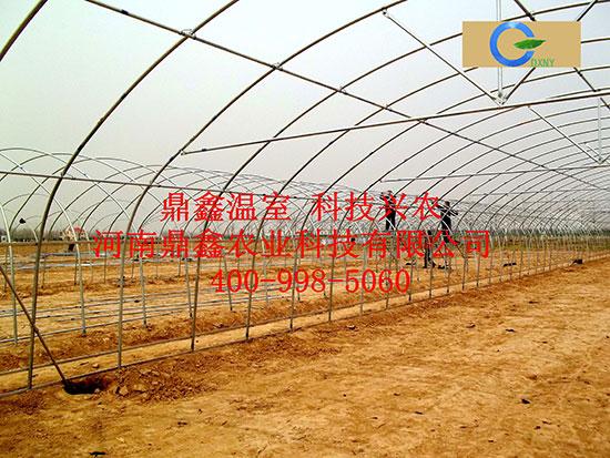 农业园区专用温室大棚