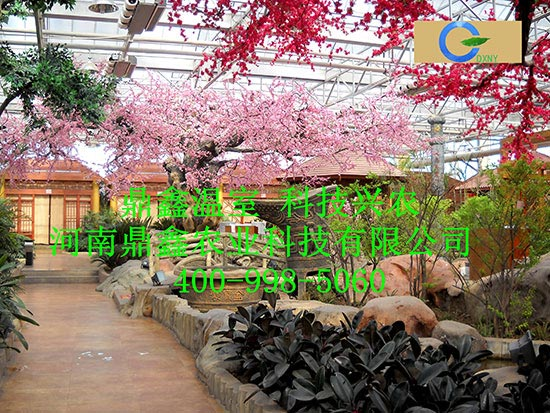 生态酒店专用温室大棚