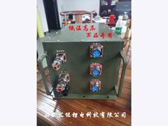 低温高压军品专用锂电池