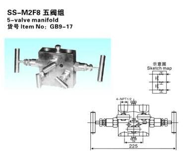 SS-M2F8五阀组