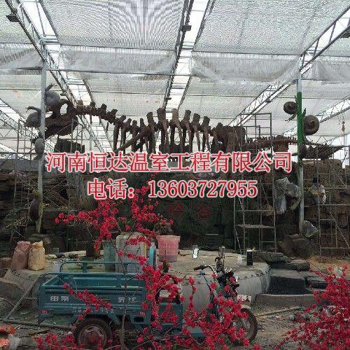花卉温室大棚厂家