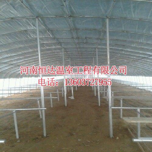 农用大棚建设