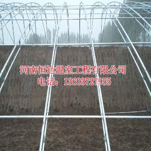 专业制造温室大棚
